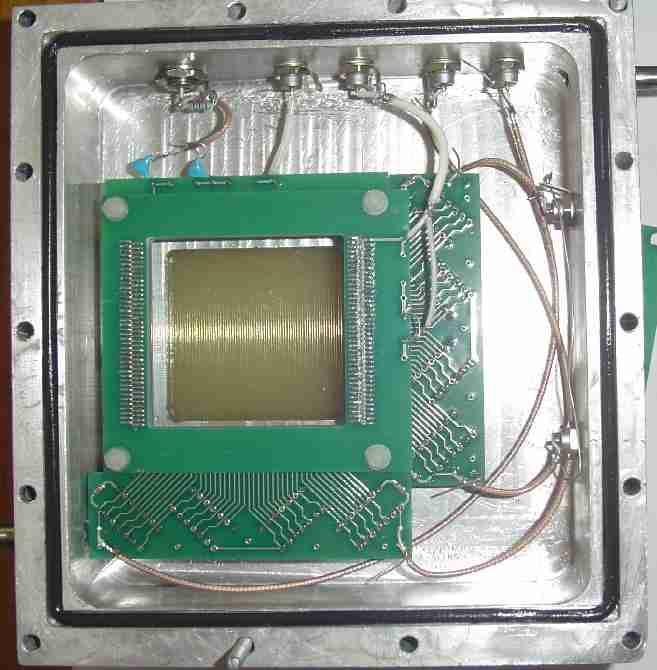 Time zero detector