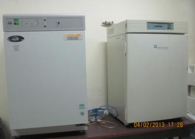 CO2 Incubators, [NuAire]