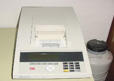 PCR [Applied Biosystems]