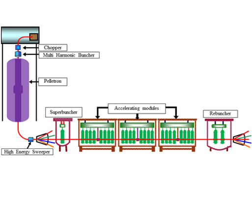 Schematic Layout and three installed cryomodule